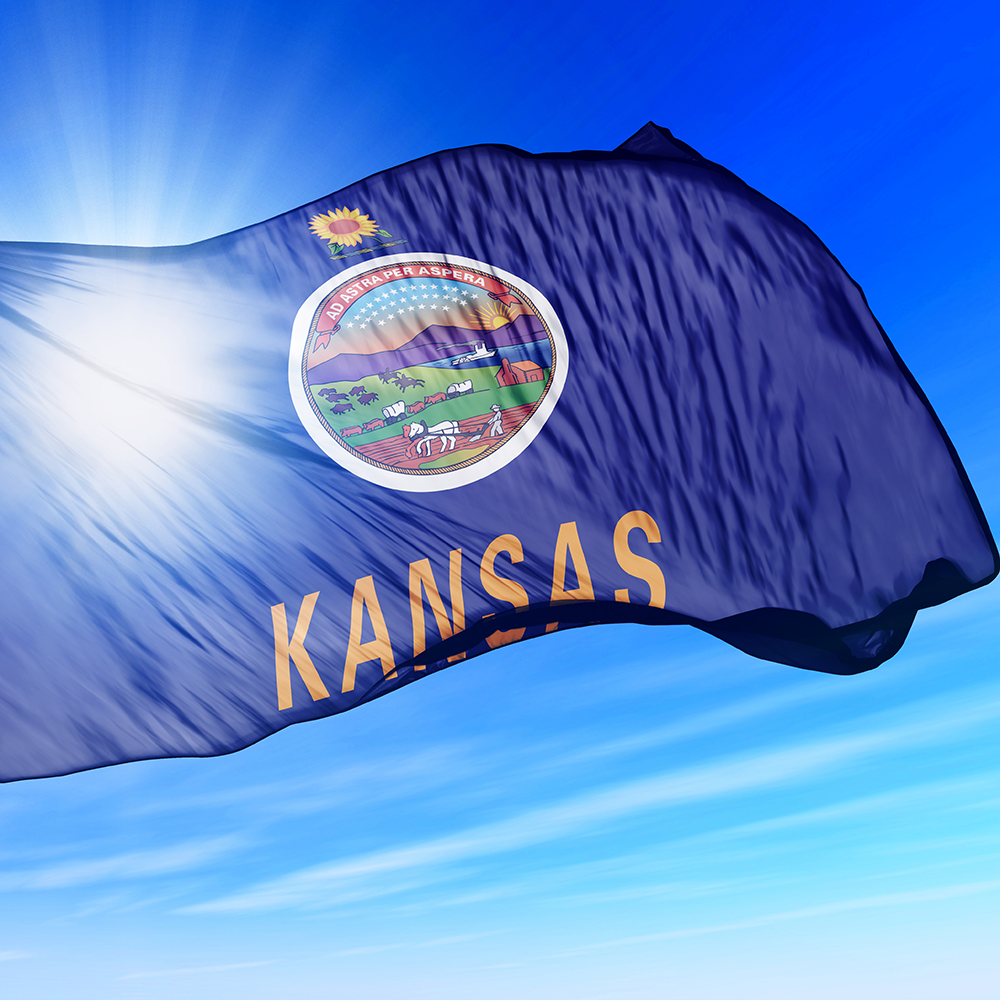 Kansas County Employment Impact Analysis